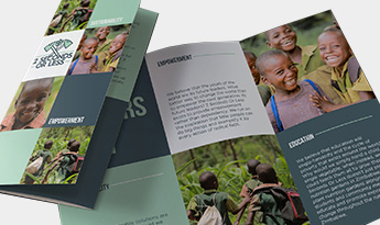 Trifold Brochure $250