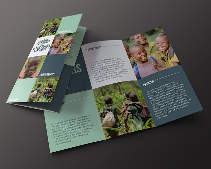 brandbusters trifold brochure